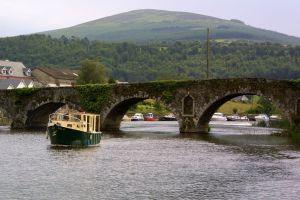 Grand Canal, Irlande