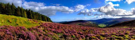 Montagnes de Wicklow Irlande