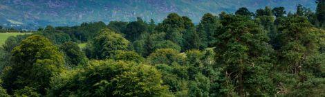 Montagnes de Blackstairs Comté de Carlow