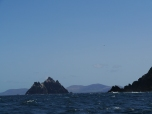 Little Skelligs © Irlande Rando